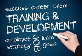 Pentingnya Training Motivasi Bagi Karyawan