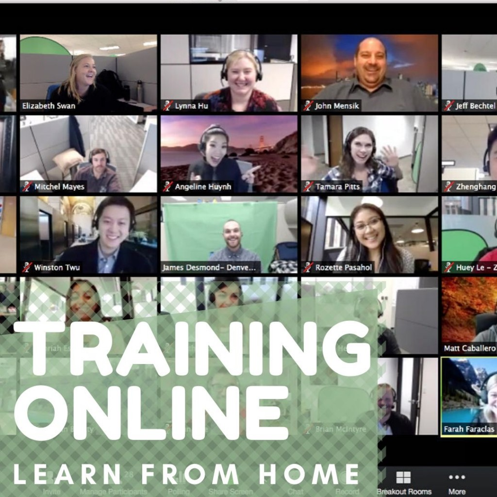 training online dalma masa pandemi covid